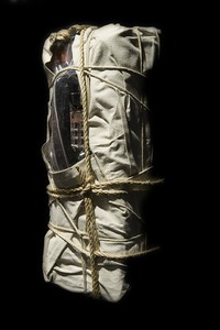 Wrapped pay telephone, 1988